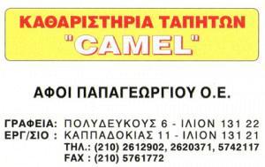CAMEL (ΑΦΟΙ ΠΑΠΑΓΕΩΡΓΙΟΥ ΟΕ)
