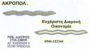 ACROPOL (ΔΑΥΡΟΣ ΝΙΚΟΛΑΟΣ)