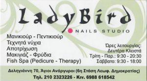 LADY BIRD (ΣΑΡΡΗ ΛΙΛΙΑΝΑ)