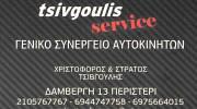 ΤΣΙΒΓΟΥΛΗΣ ΧΡΙΣΤΟΦΟΡΟΣ & ΣΤΡΑΤΟΣ