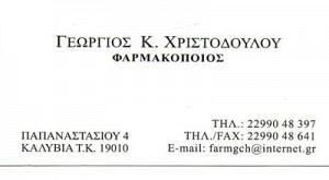 ΧΡΙΣΤΟΔΟΥΛΟΥ ΓΕΩΡΓΙΟΣ