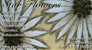 STAR FLOWER ( ΒΑΣΙΛΙΟΥ ΜΑΡΙΑ)