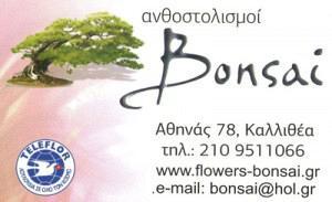 BONSAI (ΜΠΑΛΛΑΣ ΔΗΜΗΤΡΙΟΣ)