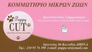 PUPPY CUT (ΓΡΑΜΜΑΤΙΚΟΥ ΚΩΝΣΤΑΝΤΙΝΑ)