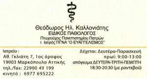 ΚΑΛΛΟΝΙΑΤΗΣ ΘΕΟΔΩΡΟΣ