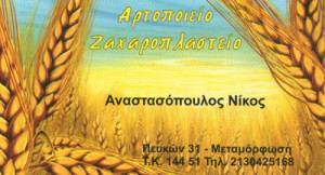 ΑΝΑΣΤΑΣΟΠΟΥΛΟΣ ΝΙΚΟΛΑΟΣ