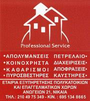 PROFESSIONAL SERVICE (ΠΑΝΑΓΟΠΟΥΛΟΥ ΑΓΓΕΛΙΚΗ)