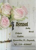 BONSAI (ΣΤΑΜΟΥ ΕΙΡΗΝΗ)
