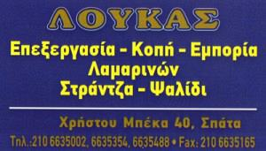 ΛΟΥΚΑΣ ΠΑΝΑΓΙΩΤΗΣ
