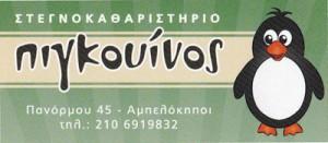 ΠΙΓΚΟΥΙΝΟΣ (ΧΟΛΕΒΑ ΕΙΡΗΝΗ)
