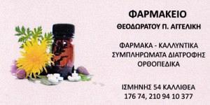 ΘΕΟΔΩΡΑΤΟΥ ΑΓΓΕΛΙΚΗ
