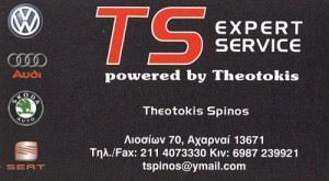 TS EXPERT SERVICE (ΣΠΙΝΟΣ ΘΕΟΤΟΚΗΣ)
