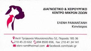 ΡΑΜΑΝΤΑΝΗ ΕΛΕΝΗ & ΤΖΙΑΚΗ ΜΑΡΘΑ