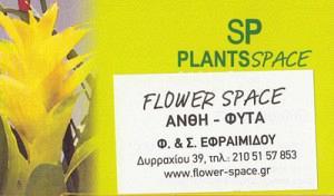FLOWER SPACE (ΕΦΡΑΙΜΙΔΗΣ ΙΩΑΝΝΗΣ)