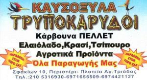 ΤΡΥΠΟΚΑΡΥΔΟΙ (ΤΣΙΝΤΖΑΣ ΝΙΚΟΛΑΟΣ & ΑΡΙΣΤΕΙΔΗΣ ΟΕ)