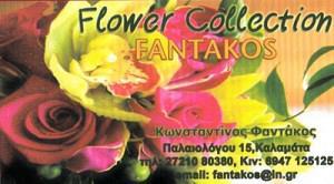 FLOWER COLLECTION (ΦΑΝΤΑΚΟΣ ΚΩΝΣΤΑΝΤΙΝΟΣ)