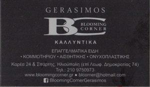 BLOOMING CORNER (ΘΕΟΤΟΚΑΤΟΣ ΑΝΤΩΝΙΟΣ)