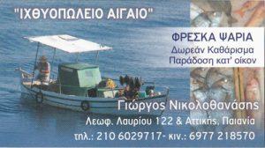 ΑΙΓΑΙΟ (ΝΙΚΟΛΟΘΑΝΑΣΗΣ ΓΕΩΡΓΙΟΣ)