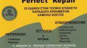 PERFECT REPAIR (ΜΗΤΣΑΚΟΣ & ΣΙΒΑΤΖΗ ΟΕ)
